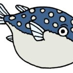 【漢字の由来】フグ(河豚)は海の魚なのになぜ「河」の字を書くの?